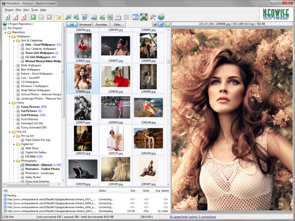 best image downloader download all images from a website or gallery
